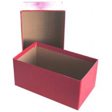 Guardhouse - Currency Box - Modern Size